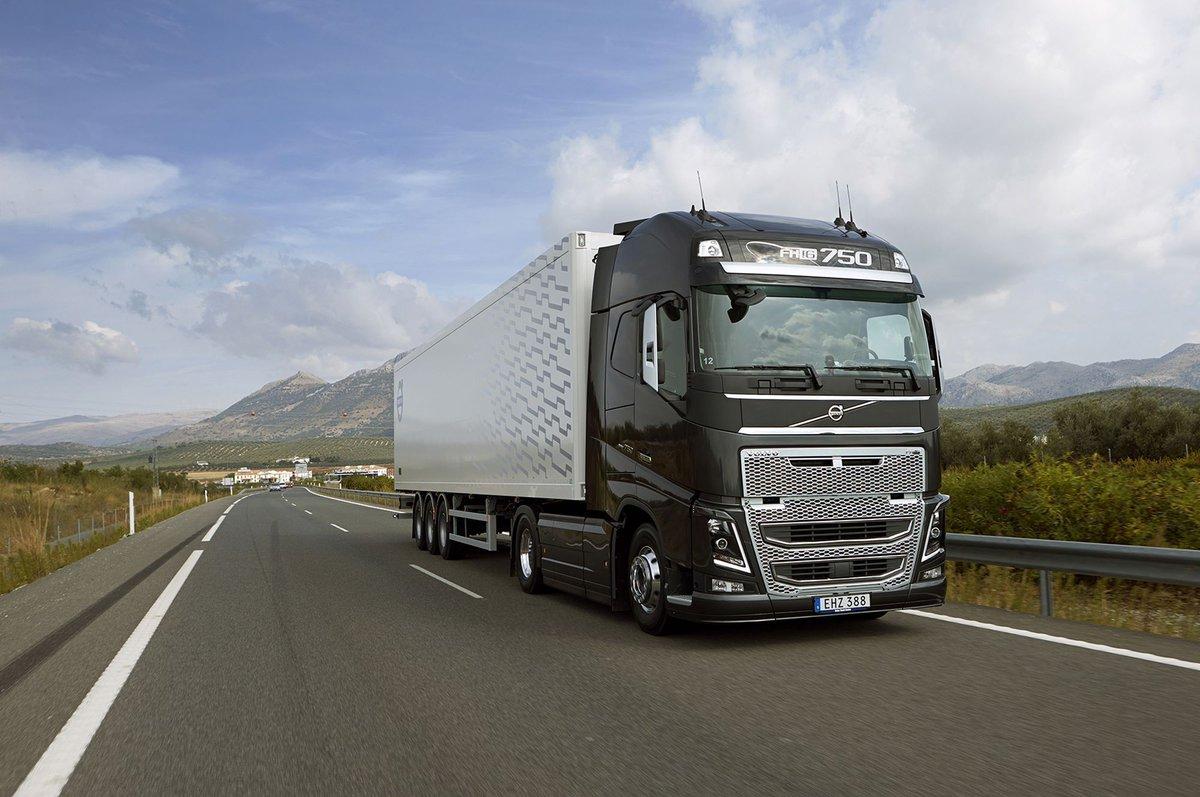 Транспортные услуги по перевозке